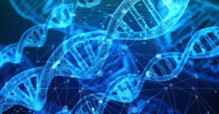 Données génétiques: un grand besoin de formation chez les soignants // www.revuehemispheres.com